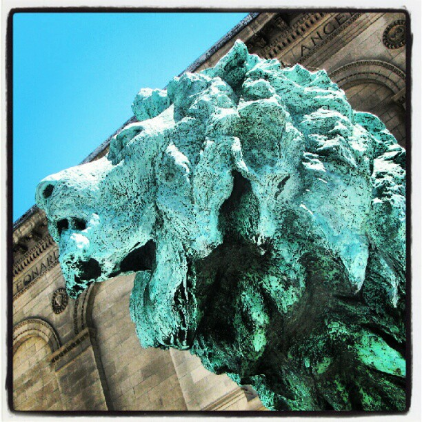 On the prowl. Art Institute lion.