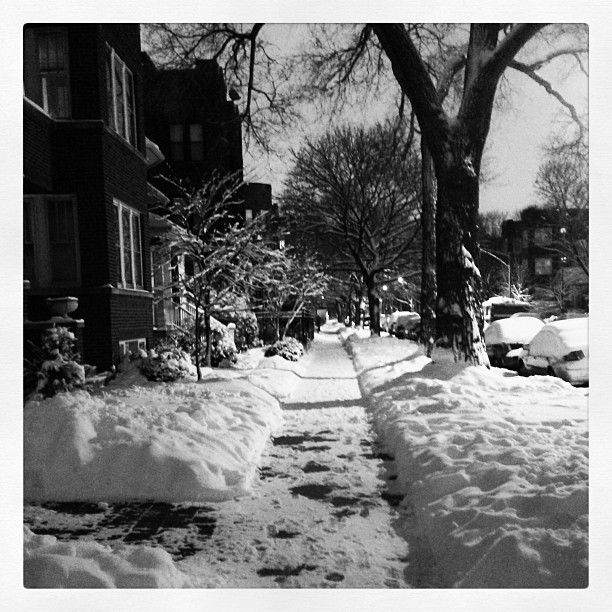 Very Glad My Neighbors Have A Snowblower