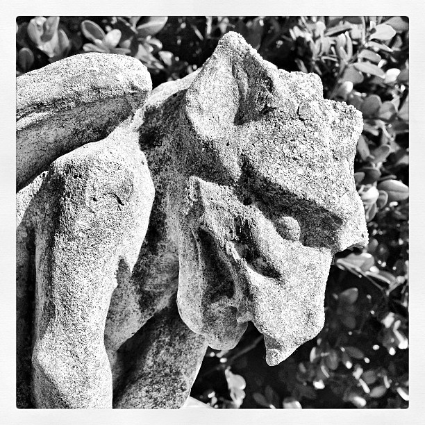Gargoyles And Gardens